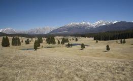 Mountain View da Cansiglio - l'Italia fotografia stock libera da diritti