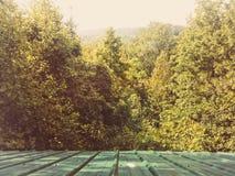 Mountain View da janela de cabine Fotos de Stock