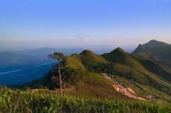 Mountain View da maneira e acampamento base de Doi Pha Tang, Chiang Rai, Imagens de Stock
