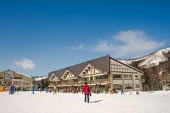 Mountain View da paisagem e de Nozawa Onsen no inverno, Nagano, Jap?o imagens de stock royalty free