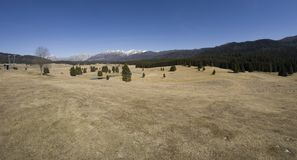 Mountain View dalla pianura di Cansiglio con il lago alpino - Italia immagini stock libere da diritti