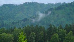 Mountain View de Altai en verano almacen de metraje de vídeo