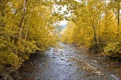 Mountain View de chute photographie stock libre de droits