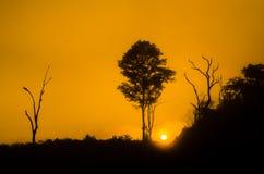 Mountain View de la salida del sol de la silueta Imagen de archivo libre de regalías