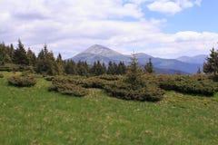 Mountain View de la vallée, montagne carpathienne Photos libres de droits