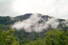 Mountain View de Smokey Fotografia de Stock