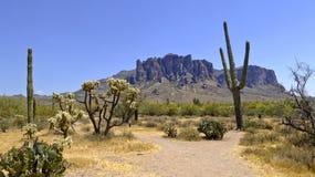 Mountain View de Supersition del empalme de Apache, Airzona Foto de archivo