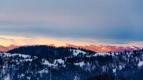 Mountain View del invierno en el amanecer, montañas superiores de la nieve, árboles verdes Imagen de archivo