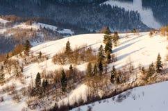 Mountain View del invierno en la cerca de madera del amanecer en la nieve, azul, t verde Fotos de archivo libres de regalías