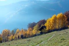 Mountain View del país del otoño Fotos de archivo libres de regalías