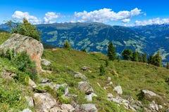 Mountain View del verano con el prado y las piedras verdes en el primero plano Austria, el Tirol, Zillertal foto de archivo