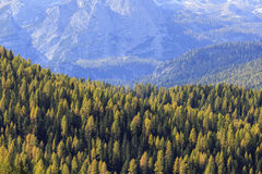 Mountain View dell'alpe Immagine Stock
