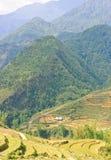 Mountain View dell'altopiano di Sapa immagini stock