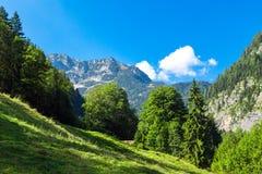 Mountain View delle alpi da Salzberg Fotografie Stock