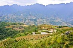 Mountain View des collectes de riz image libre de droits