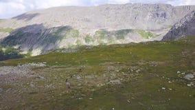 Mountain View des Tales, Dorf in den Bergen, Weiden, grünes Gras, Wiesen, Panorama, Ansicht von oben stock video