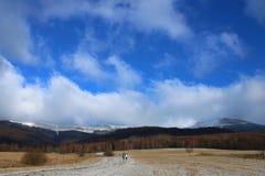 Mountain View di Bieszczady sul picco di Tarnica Immagine Stock Libera da Diritti