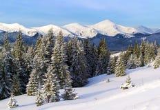 Mountain View di inverno fotografia stock libera da diritti