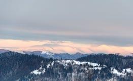 Mountain View di inverno all'alba, montagne superiori della neve, alberi verdi Fotografia Stock