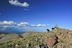 Mountain View di San Juan Fotografia Stock Libera da Diritti