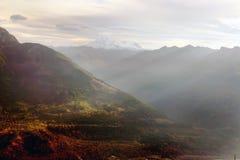 Mountain View dos alces Foto de Stock