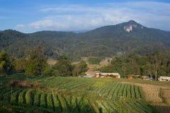 Mountain View e céu azul Imagens de Stock Royalty Free