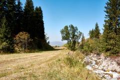 Mountain View em minha viagem da bicicleta imagens de stock