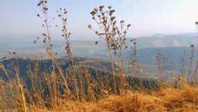 Mountain View en el tiempo del día Imagenes de archivo