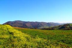 Mountain View en otoño Imagen de archivo libre de regalías