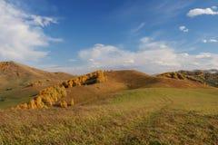 Mountain View en otoño fotografía de archivo libre de regalías