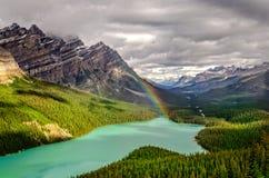 Mountain View escénico del valle del lago Peyto, montañas rocosas canadienses Fotografía de archivo libre de regalías