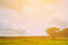 Mountain View et nuage de fond polychromes Ou fond de nature Photos stock