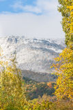 Mountain view-fall Royalty Free Stock Photography