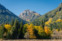 Mountain view in the fall stock image