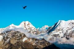 Mountain View am Fliegen der große Höhe-Wolken Himmel und des Vogels Lizenzfreie Stockbilder