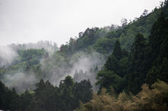 Mountain view of Fukusumi. Kyoto prefecture, Japan showing fogs and trees on the top of mountains Stock Photography