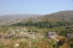 Mountain View - Gerês Portugal Arkivfoto