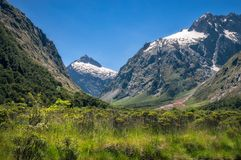 Mountain View a Gertrude Valley sul modo a Milford Sound, NZ immagine stock