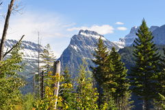 Mountain View in Glacier National Park. Scenic view of a mountains scene in Glacier National Park Royalty Free Stock Photos