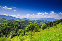 Mountain view from green meadow in summer Stock Photography