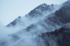 Mountain view with haze and forest Royalty Free Stock Photography