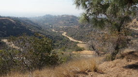 Mountain View of Hollywood Hills Royalty Free Stock Image