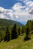 Mountain View i fjällängarna Arkivfoto