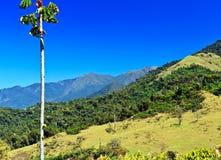 Mountain View i Rio de Janeiro, Brasilien Fotografering för Bildbyråer