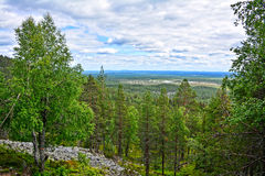 Mountain view. Mountain landscape in Lapland Finland Royalty Free Stock Photos