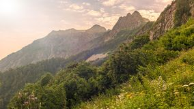 Mountain view in a light haze at sunset through the grass and shrubs stock images