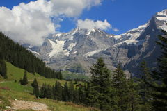 Mountain view with Mönch and Jungfrau glacier Ber. Near Kleine Scheidegg, with view at the mountains Mönch and Jungfrau in Bernese Oberland Switzerland royalty free stock image
