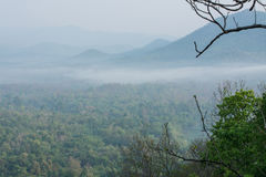 Mountain view of Mae wong national park with frog Royalty Free Stock Photography
