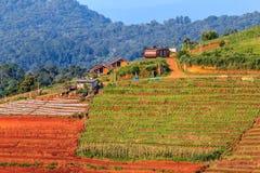 Mountain View morgens am chaingmai Thailand Stockfotos