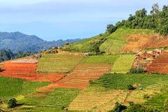 Mountain View morgens am chaingmai Thailand Stockfoto